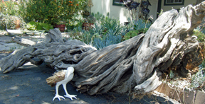 Log with papier-mache raven