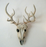 Vegan Deer Skull 2