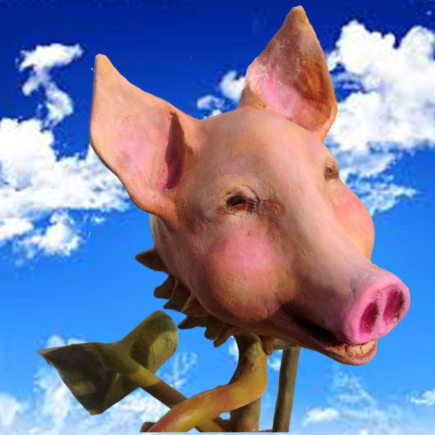 Pig_sq_sky_web