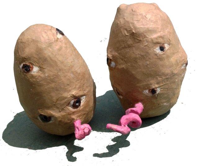 PigtatoBacks
